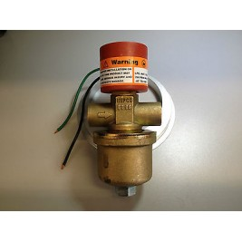 IMPCO BRC High Flow LPG Solenoid Valve & Filter